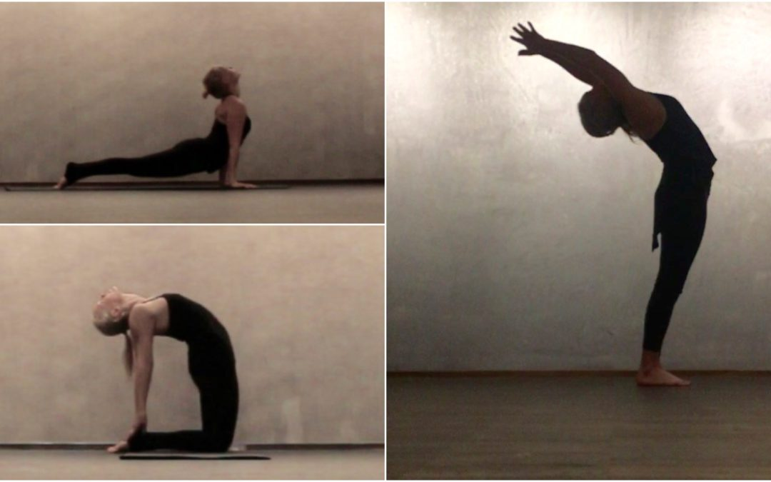 Intro to the Science of Yoga